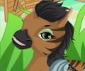 Jogar Horse Farm Assistant