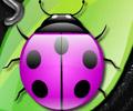 Jogar Colorful Bugs