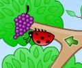 Jogar Fruity Bugs