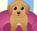 Jogar Doggy Shelter